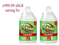 OdoBan 1 Gal Concentrate 2-Pack, Cucumber Melon Scent - Odor